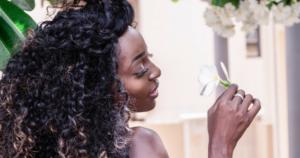 Blog des shampoings végétaux pour vos cheveux crépus une reine en chaussettes beauté naturelle des cheveux crépus